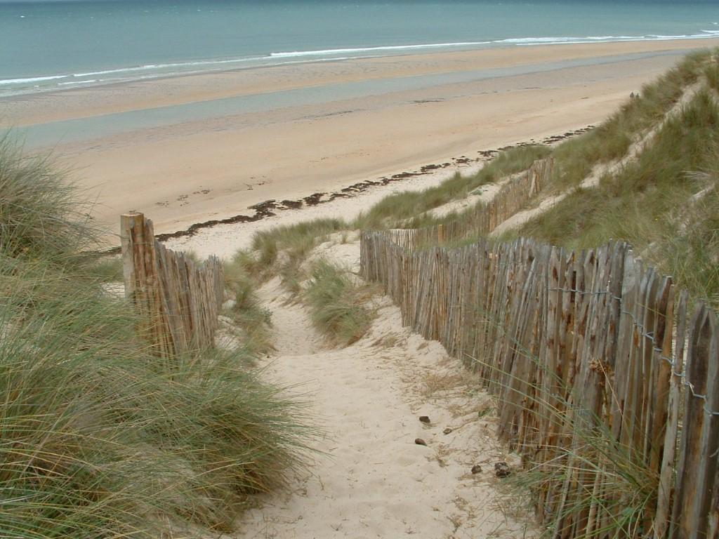 Littoral - Dunes