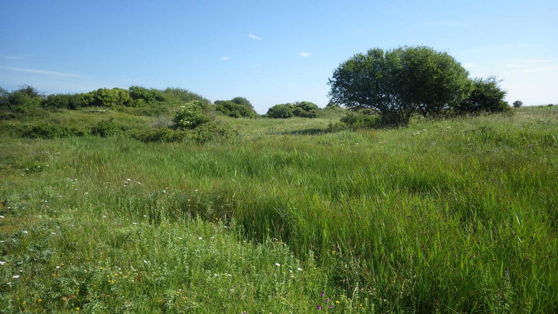 Prairies - Aumeville Lestre
