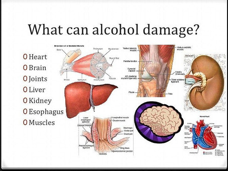 ACTION OF ALCOHOL ON INTERNAL ORGANS