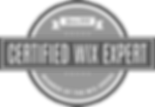 Wix Expert Certified Web Designer
