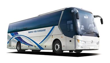 автобус групп.png