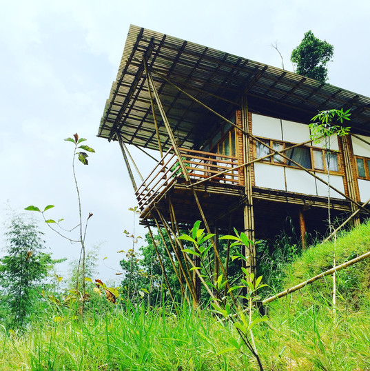 Bamboo Cottage.JPG