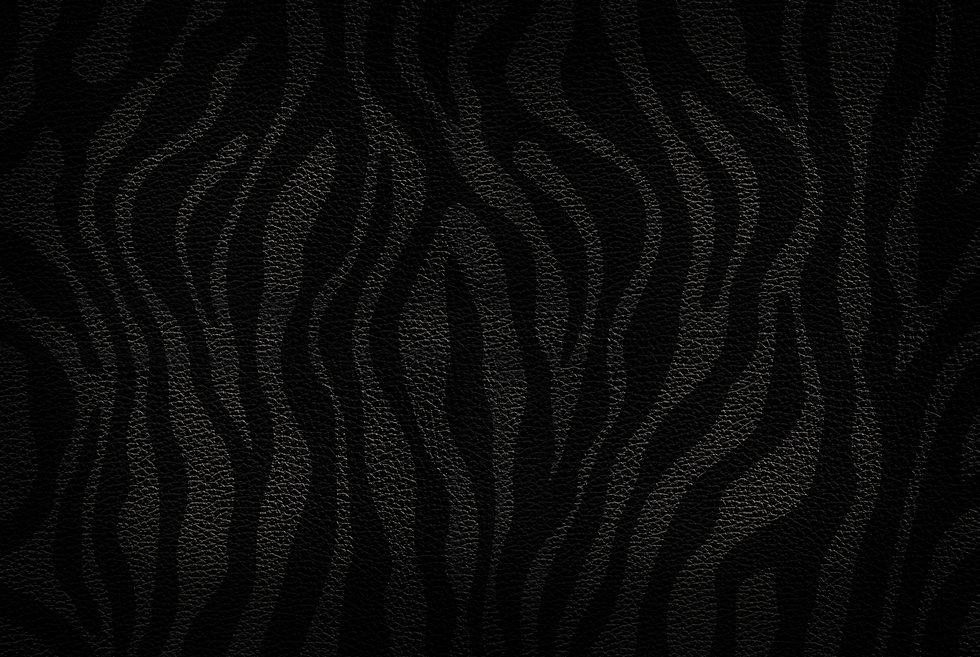 Zebra_backgroundLowRes.jpg