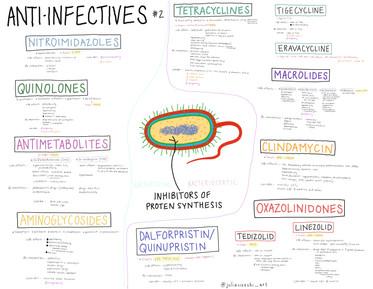 Anti-infectives 2.JPG