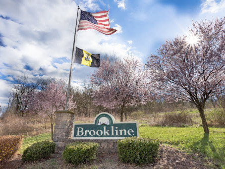 Brookline in Pictures