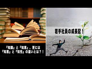 """【若手社員の成長記!】「第52回:『知識』と『知恵』、更には『知恵』と『知性』の違いとは?!」~経験して初めて、自分の""""モノ""""になる!〜"""