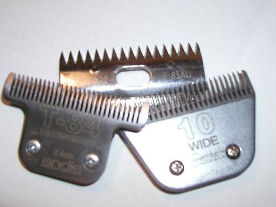 Wide animal Blades sharpening