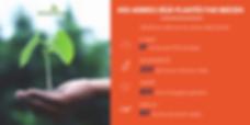Beezen plante des arbres avec le program