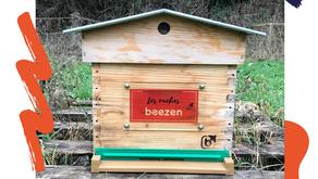 Beezen s'engage pour la biodiversité en parrainant des ruches ! 🌺🐝