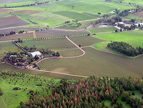 800px-Barossa_Valley_South_Australia.jpg