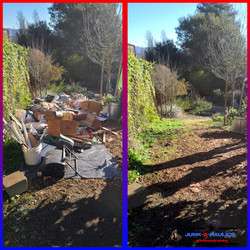 Backyard Clean out in Sebastopol CA