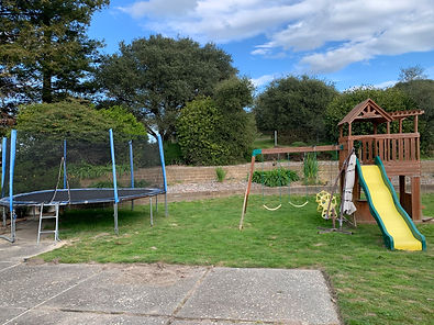 play structure and trampoline removal an