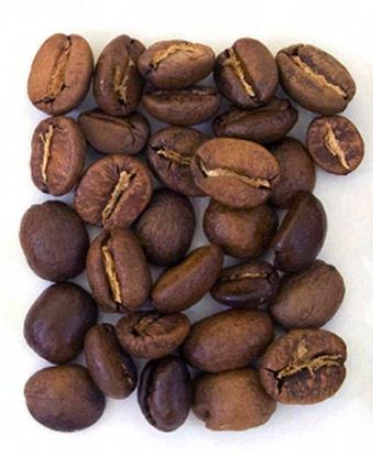 Show Me The World Coffee Club 1 Bag