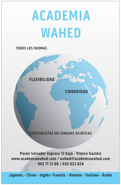Idiomas en Vitoria-Gasteiz, Academia