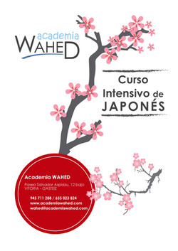 Academia Wahed japonés intensivo