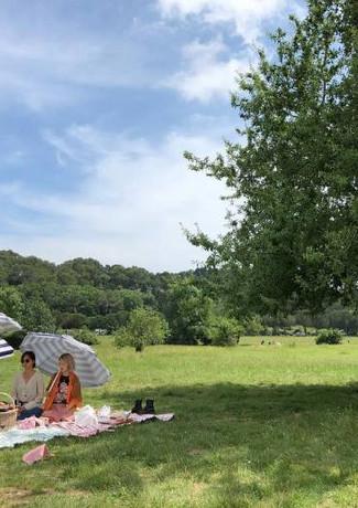野餐活動.jpg