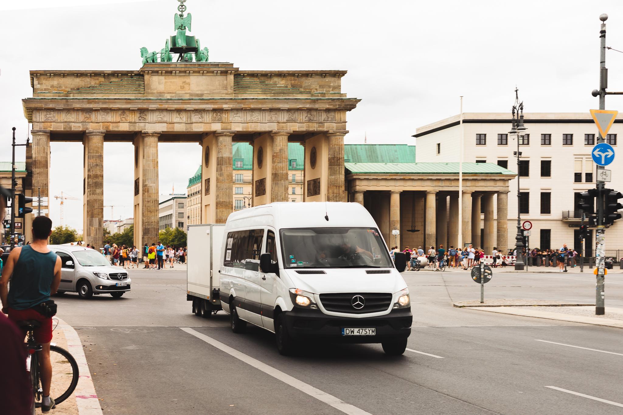Bison in Berlin