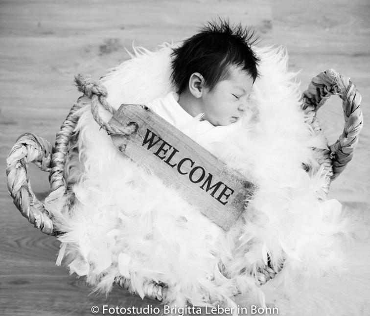Newborn im Korb Fotostudio Bonn