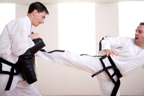 Adult Martial Art Suits