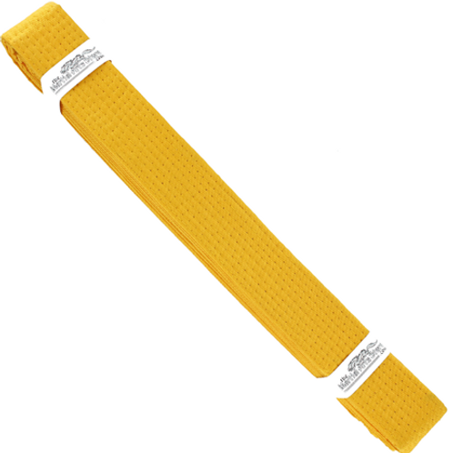 Yellow Belt Grading