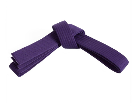 Preschool 4th Grading Purple belt