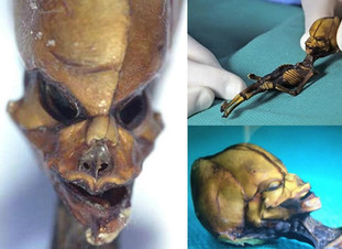 The Mystery of the Atacama Humanoid