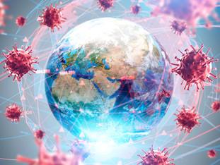 The Coronavirus Hoax