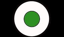 pupille oeil vert seul noir.png