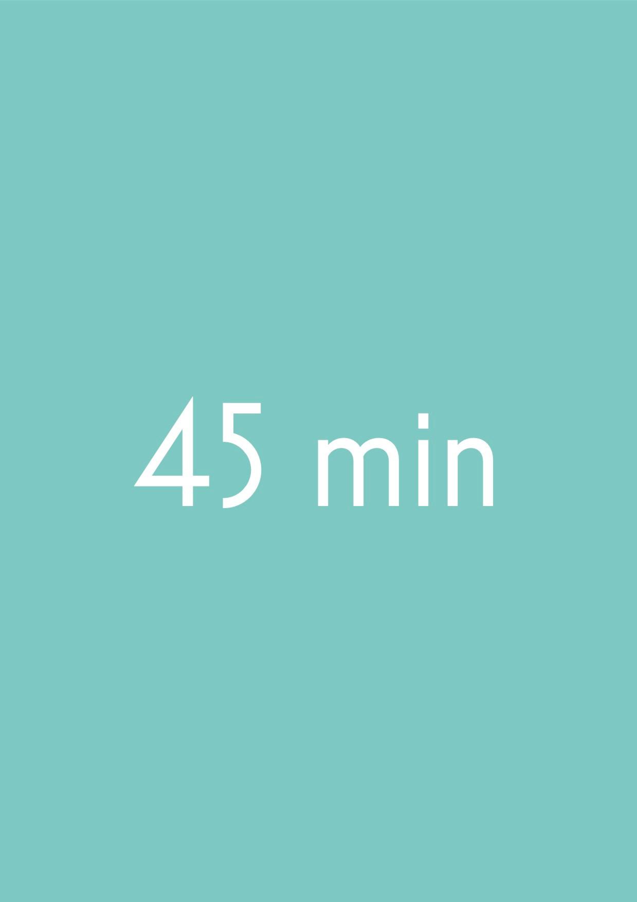 Einzelne Lektion x 45 Minuten