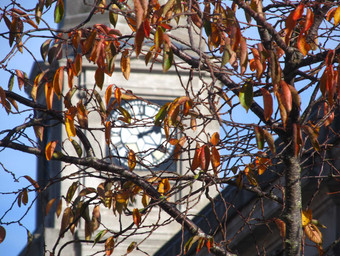 autumn-time.jpg