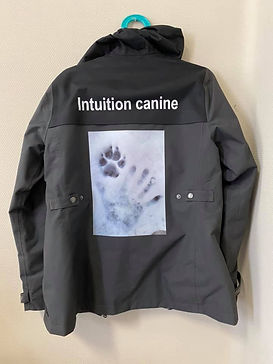 intuition canine.jpg