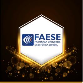 sponsor_faese.png