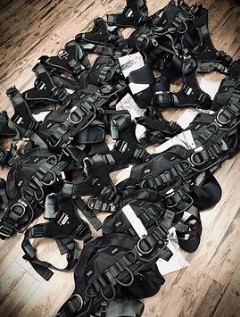 342 New Harness FB.jpeg