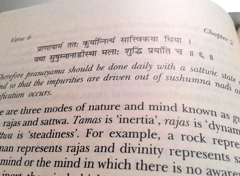Vida yogi_Pranayama o el control de l'alè vital