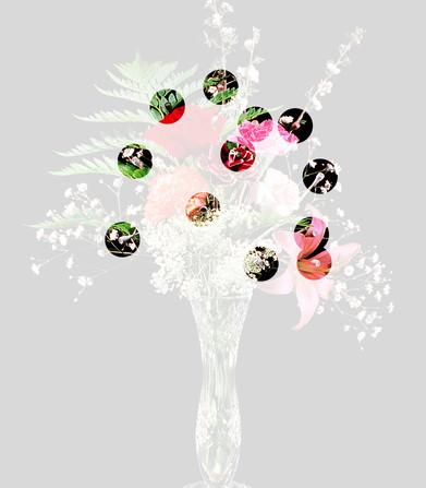 B3-flowers-after-w1080.jpg
