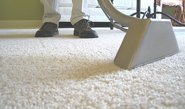 Professional Carpet Cleaning and Sanitizing for Chicago