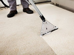 Carpet Sanitizing and Steam Cleaning
