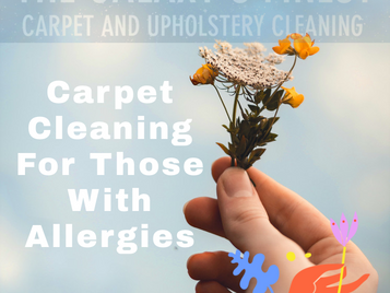 Carpet Cleaning With Allergies