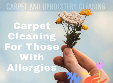 Carpet and Allergies | The Galaxy's Finest