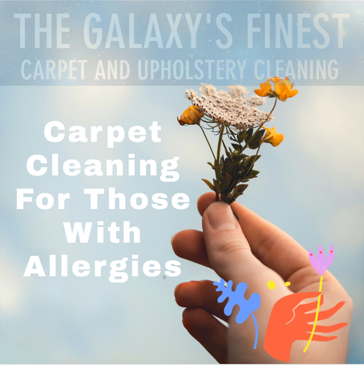 Carpet cleaning for those with allergies