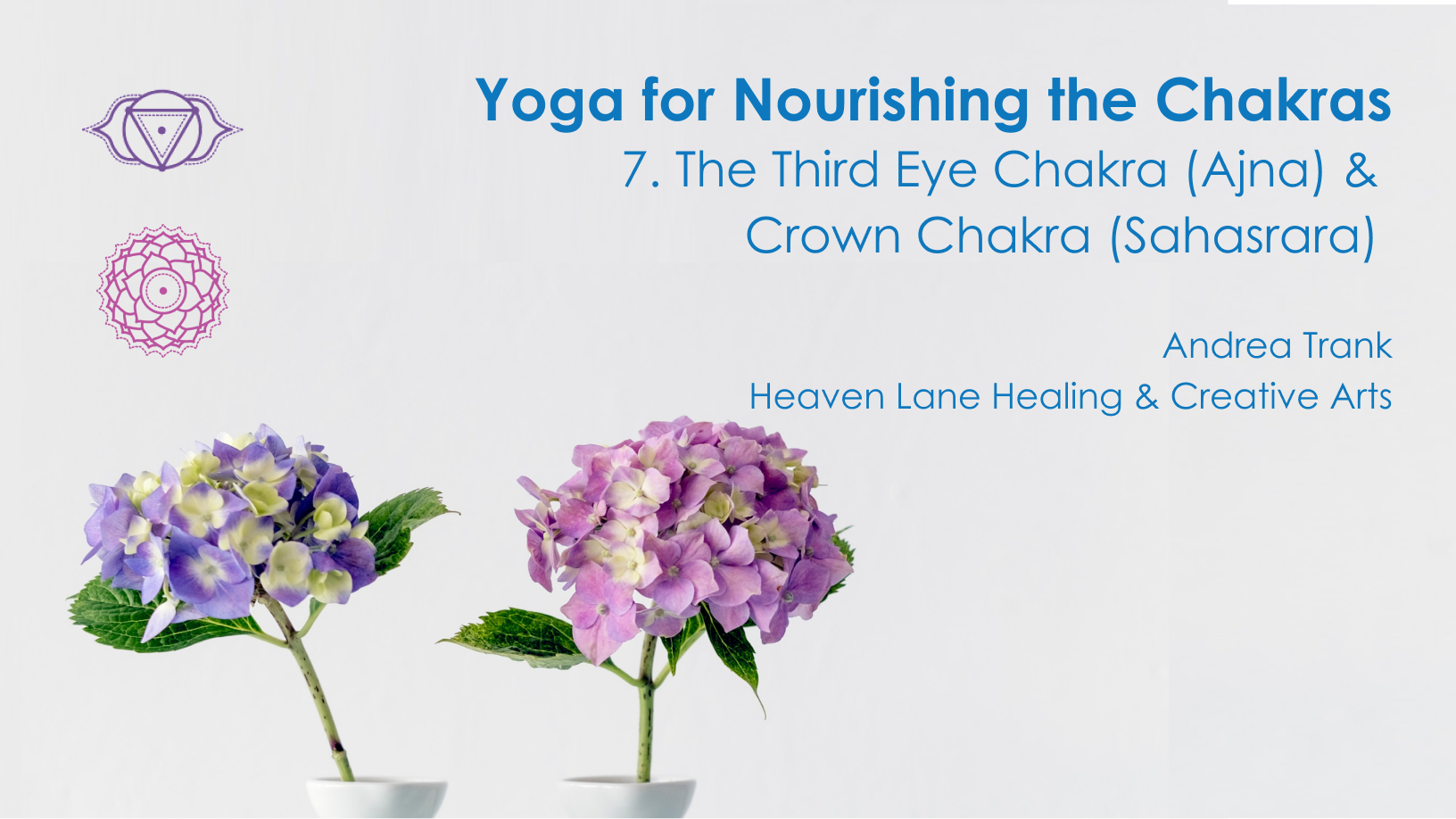 Third Eye & Crown Chakra