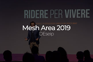 Mesh Area 2019.jpg