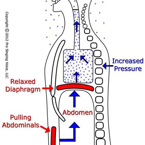 Abdominal Contraction for Increased Air Pressure