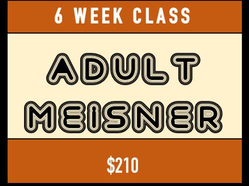 Adult Meisner