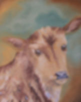 Cow Art Painting Zebu