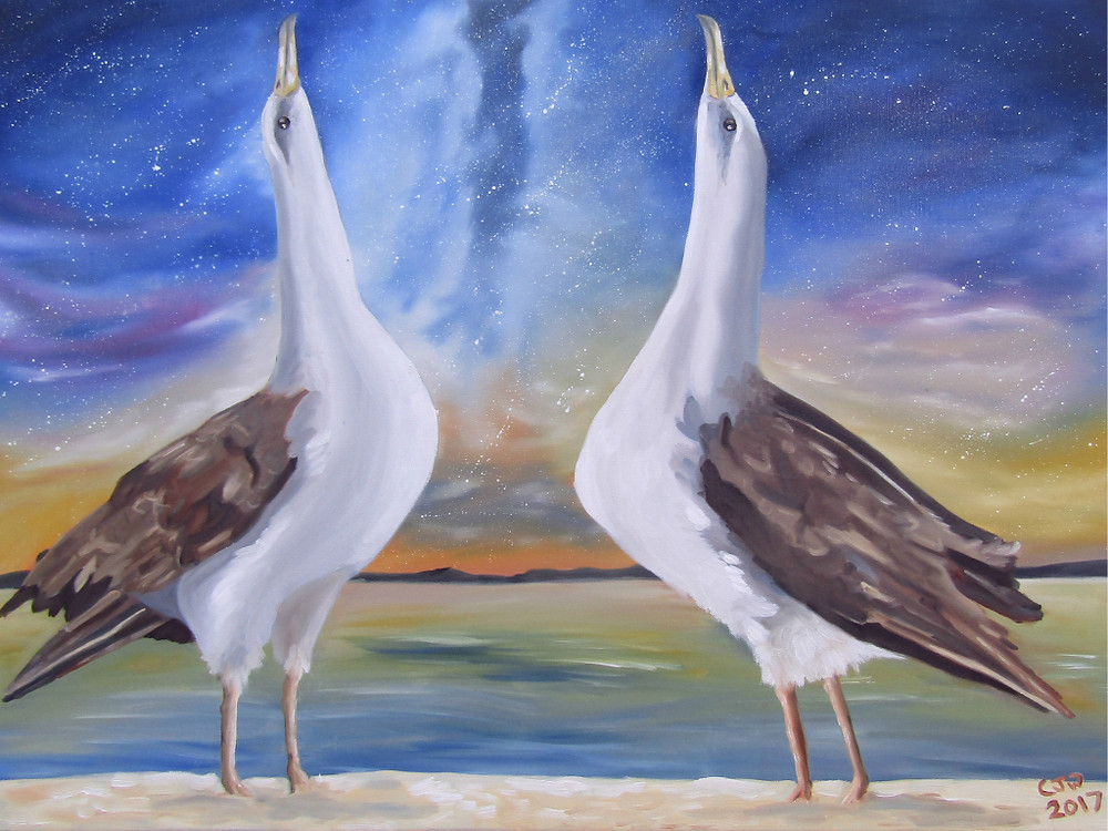 Albatross Painting for Conservation