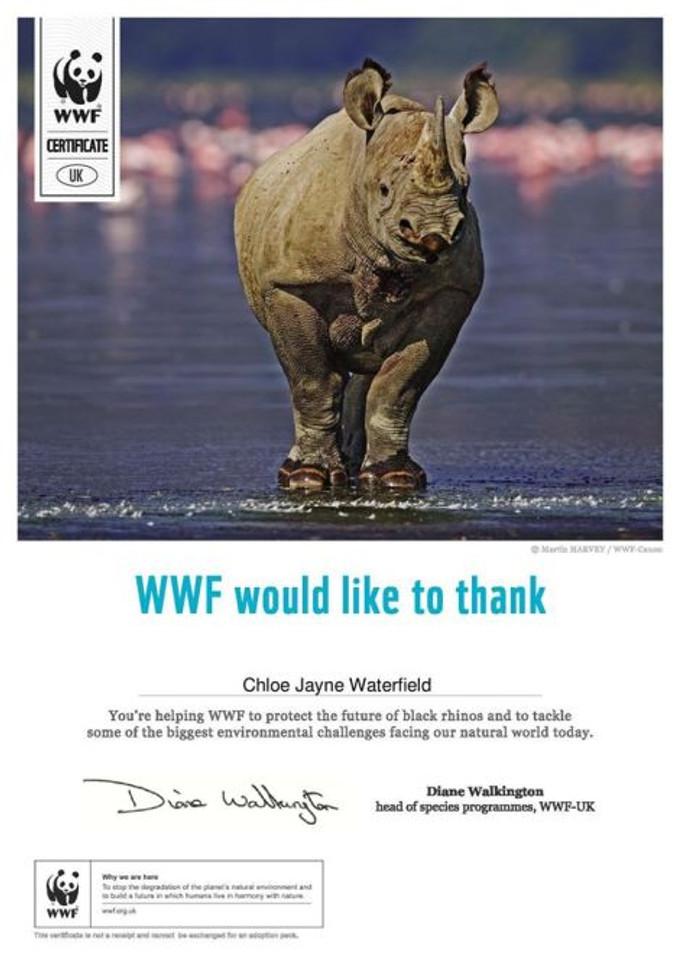 Adopt a Rhino World Widlife Fund