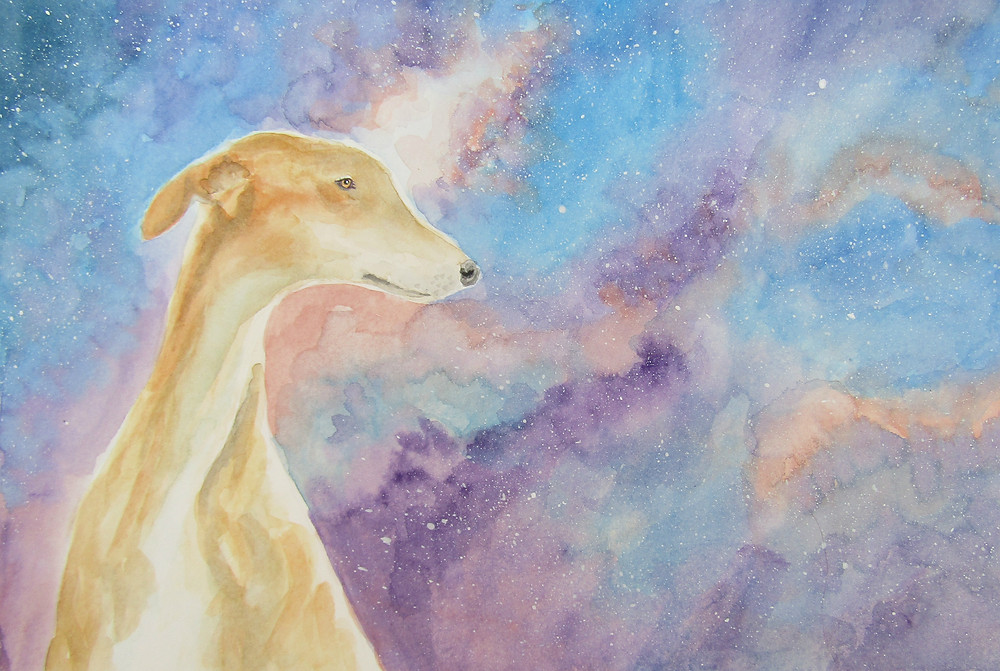 Dog Galaxy Watercolour Painting