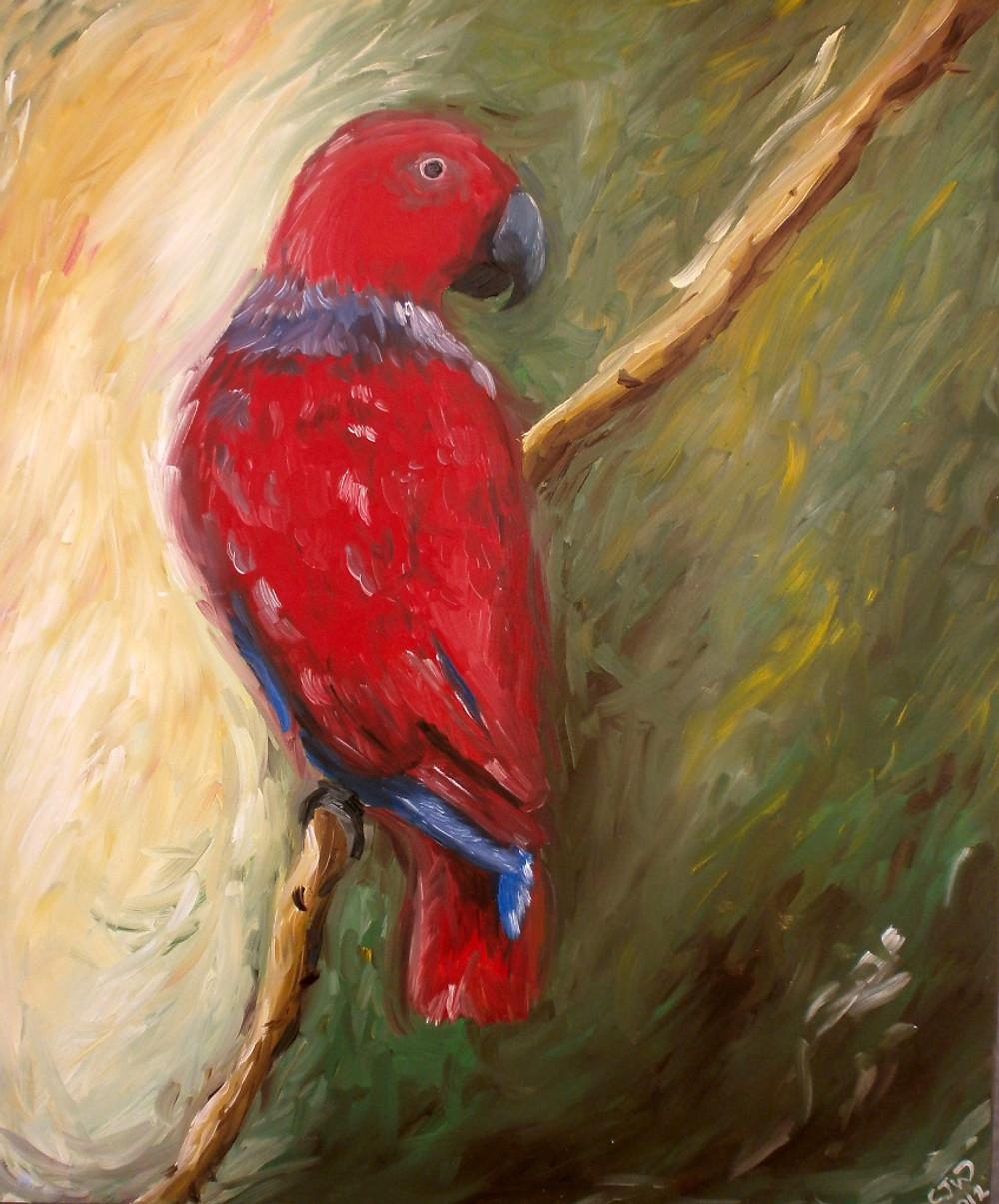 Eclectus Parrot Painting Art Bird
