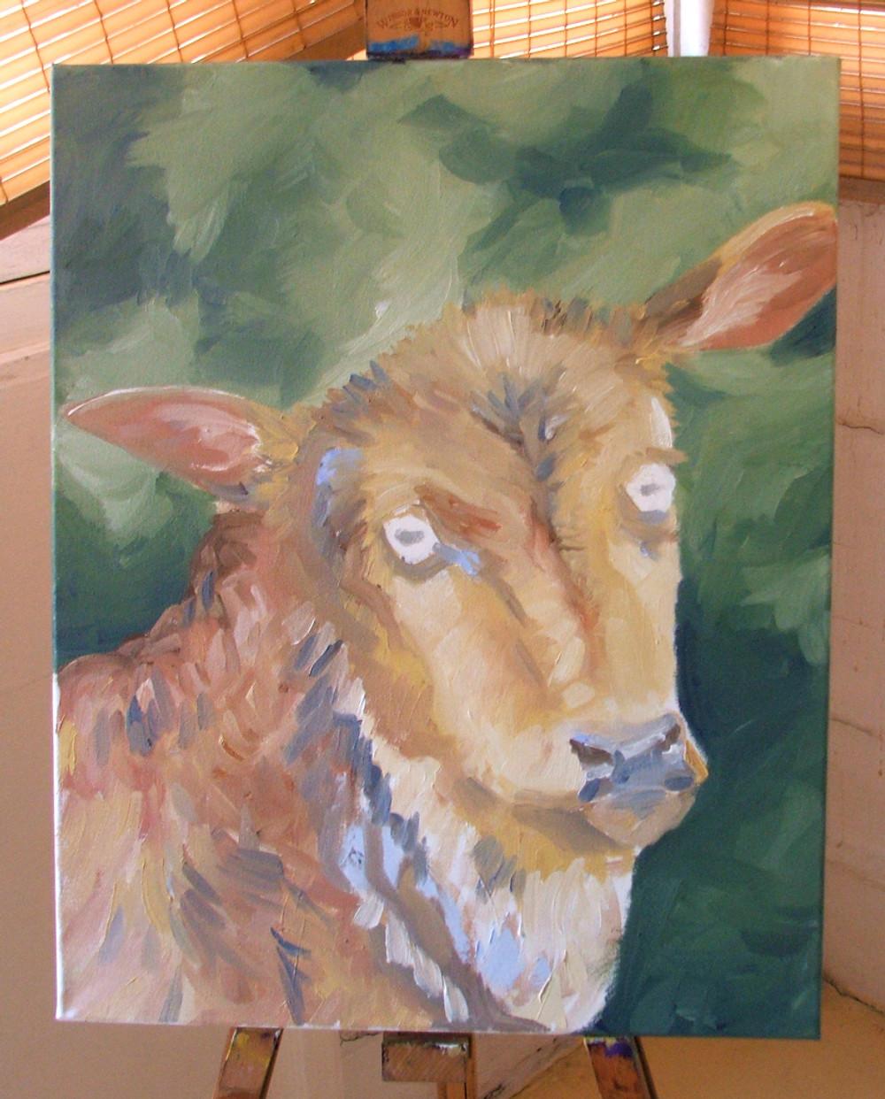 Zebu Oil Painting